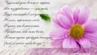 Открытка с поздравлением в стихах для любимой на 8 Марта