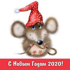 Новогодняя открытка 2020 с милой крыской