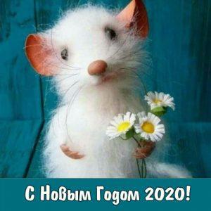 Белая крыса - символ 2020 года