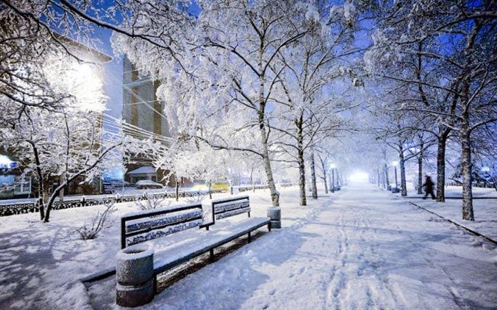 Погода на Новый Год 2020 в городах Сибири