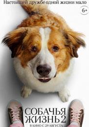 Собачья жизнь 2 - фильм 2020 года