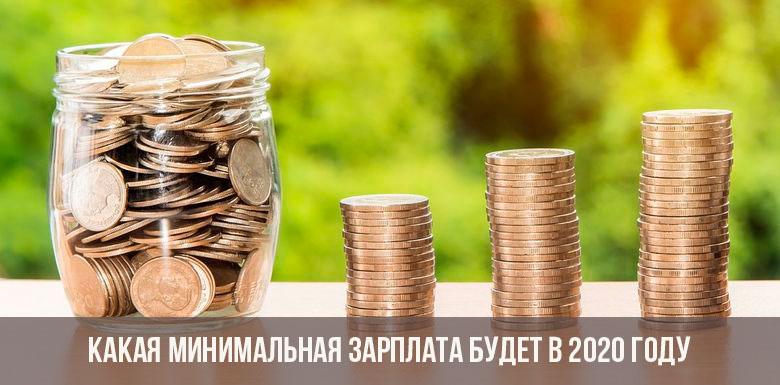 Минимальная зарплата в России в 2020 году