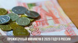Прожиточный минимум в 2020 году