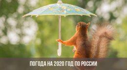 Погода на 2020 год в России