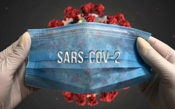 SARS-CoV-2 - факты и теории возникновения коронавируса