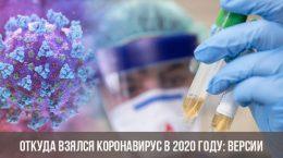 Откуда взялся коронавирус в 2020 году: версии